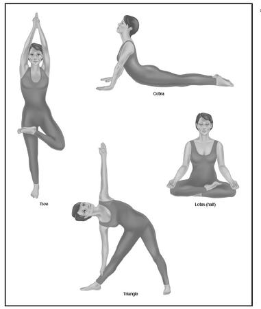 Hatha Yoga For Beginners Conscious Stretching Yoga At Home For Absolute Beginners